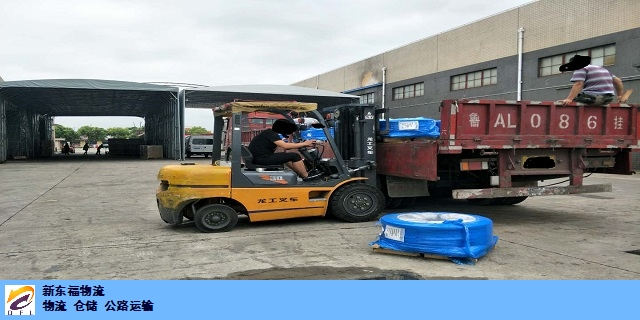 安徽到新疆物流运输用多大的车合适 贴心服务 新东福供