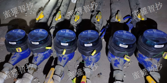 贵州远传远传水表特点 深圳蜜獾智抄科技供应
