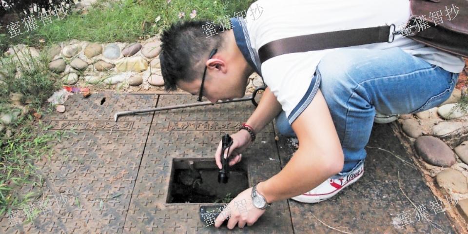 广东物联网物联网水表「深圳蜜獾智抄科技供应」