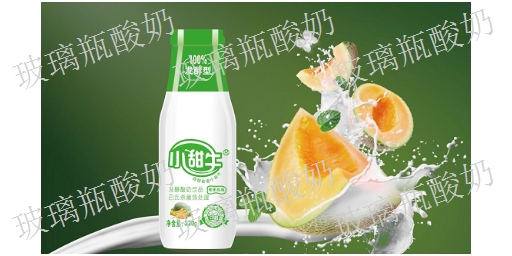 内蒙古市场上酸奶厂家 发酵酸奶「江西小甜牛生物科技供应」