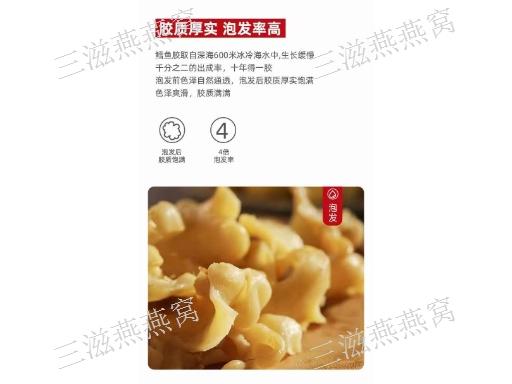 杭州海參魚膠招代理 創造輝煌「三滋燕燕窩供應」