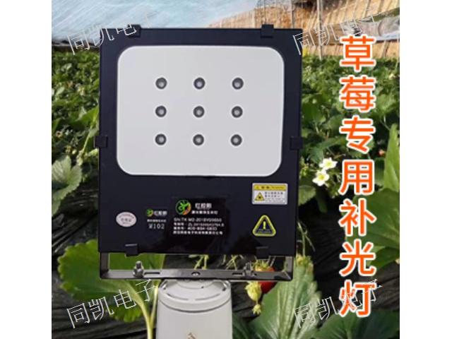 四川M101补光灯招商 来电咨询 西安同凯电子科技供应