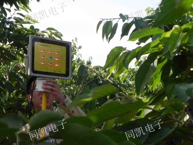 廣東激光植物生长灯销售 诚信互利 西安同凯电子科技供應