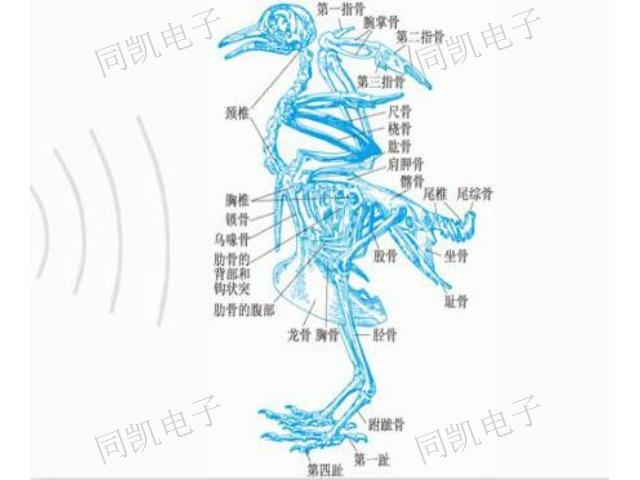 陕西果园驱鸟仪哪家好 客户至上 西安同凯电子科技供应