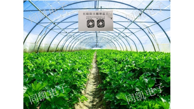 新疆红皎阳增温王销售 值得信赖 西安同凯电子科技供应