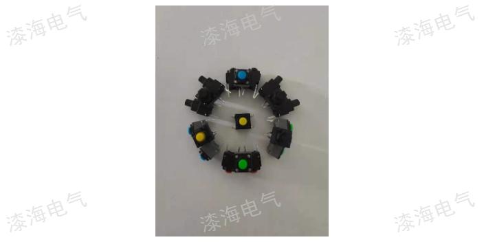 天津自锁开关现货 信息推荐「温州漆海电气供应」
