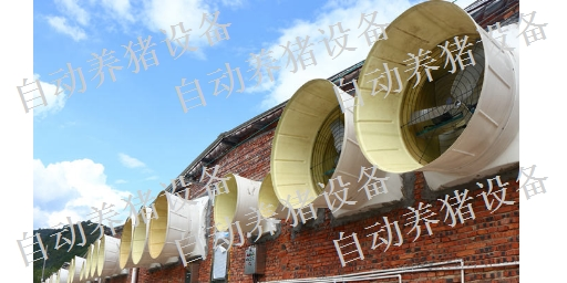新余猪场全自动料线设备哪里有卖 真诚推荐 江西增鑫科技供应
