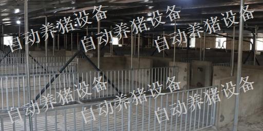 新余养猪场设备批发 诚信互利 江西增鑫科技供应