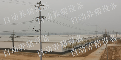 新余猪场全自动料线设备报价 贴心服务 江西增鑫科技供应
