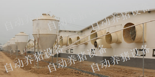 新余养猪场设备厂家电话 铸造辉煌 江西增鑫科技供应