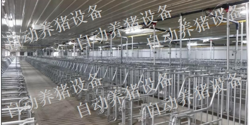 新余猪场干湿喂料器设备价格 有口皆碑 江西增鑫科技供应