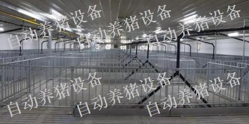 新余猪场全自动料线设备多少钱 值得信赖 江西增鑫科技供应