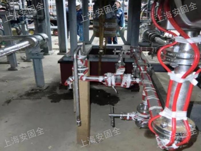 温州瑞侃电伴热线8CTV-2-CR