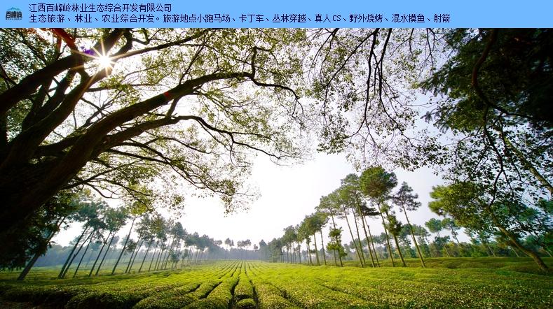 本地周边游好玩吗「江西百峰岭林业供应」