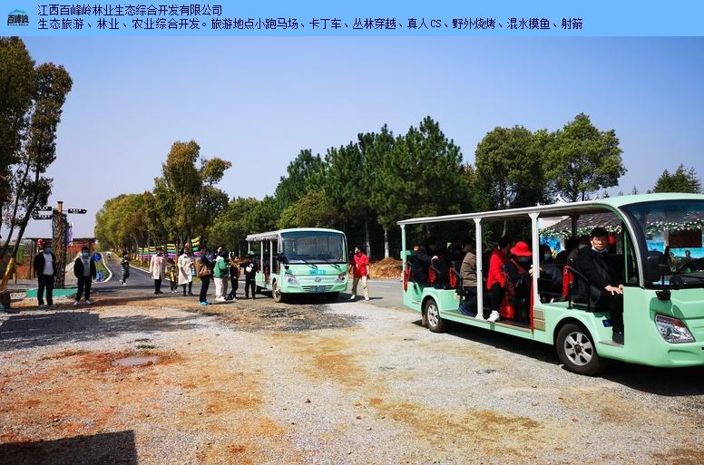 江西宜春短途周边游柴火饭 百峰岭旅游 江西百峰岭林业供应