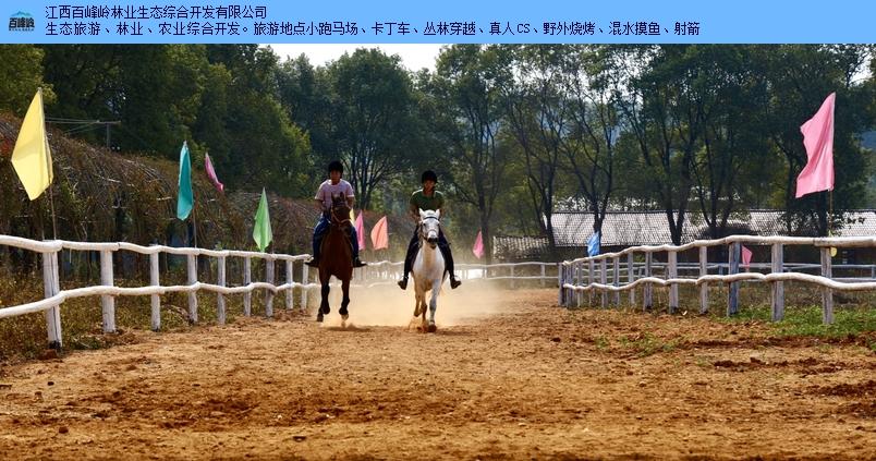 江西宜春附近周边游军马 百峰岭旅游 江西百峰岭林业供应