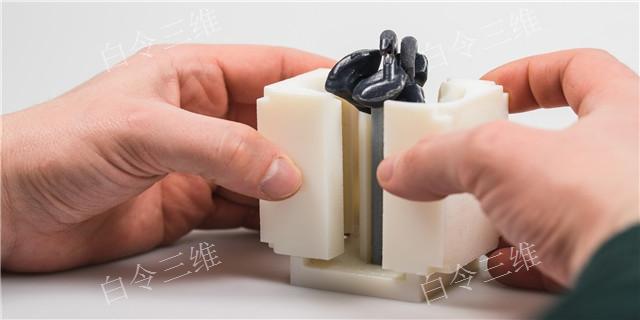 廣東醫學模型哪個品牌好 品質有保證 白令三維3D打印公司供應
