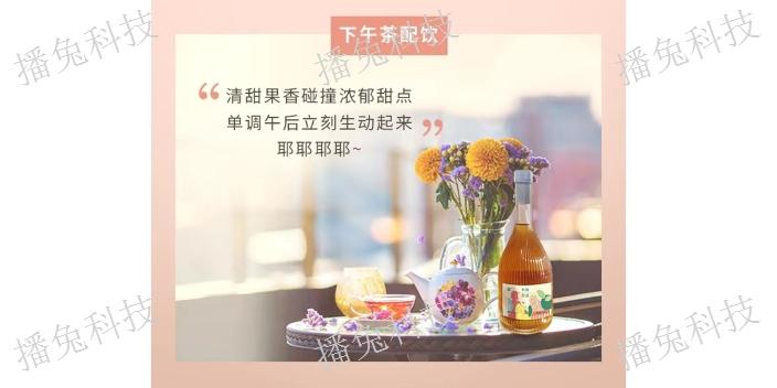 江蘇樸堤有梅友酒銷售價,有梅友酒