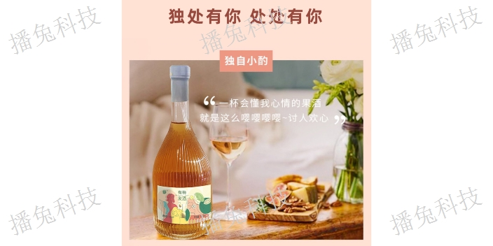 天津秒拼活動有梅友酒供應商家
