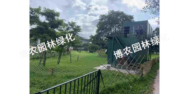 江苏边坡绿化生产基地 欢迎咨询「广东博农园林绿化工程供应」