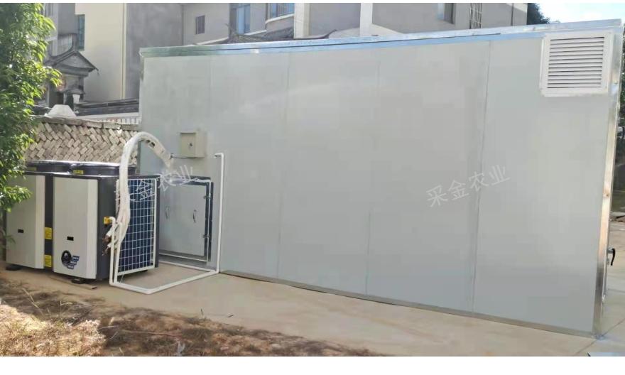 臨滄芒果烘干機 云南采金農業供應