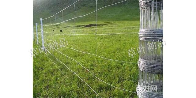 新疆球场围栏多少钱 新疆草叶金属制品供应
