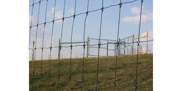 新疆铁路围栏网价格 新疆草叶金属制品供应