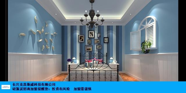 江西综合硅藻泥涂料 欢迎咨询 长兴克洛斯威科技供应