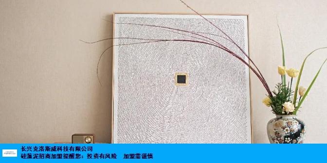 江苏标准硅藻泥代理品牌 真诚推荐 长兴克洛斯威科技供应