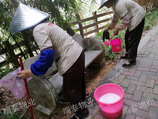 惠城区写字楼物业管理性价比「深圳市端泰物业管理供应」