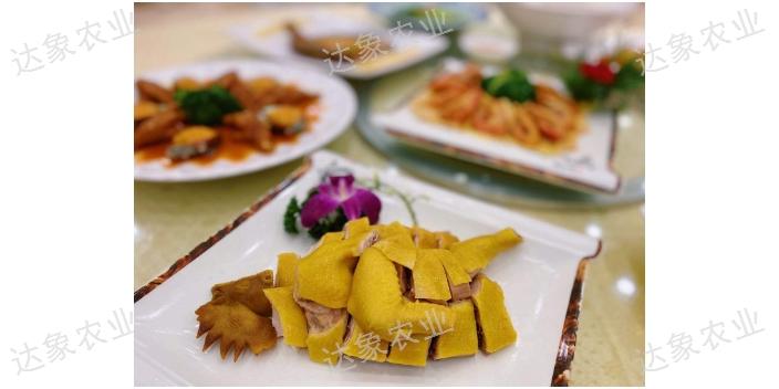 陈村怎么样的美食攻略有哪些