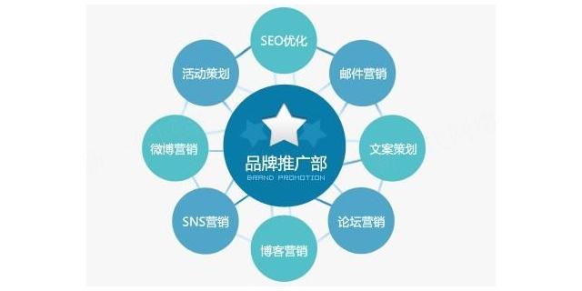 定西服务好的网络公司 新一代网络 甘肃新一代网络科技供应