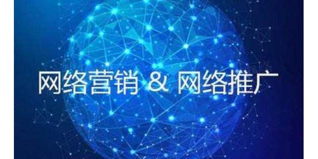 甘南效果好的网络公司价格对比,网络公司