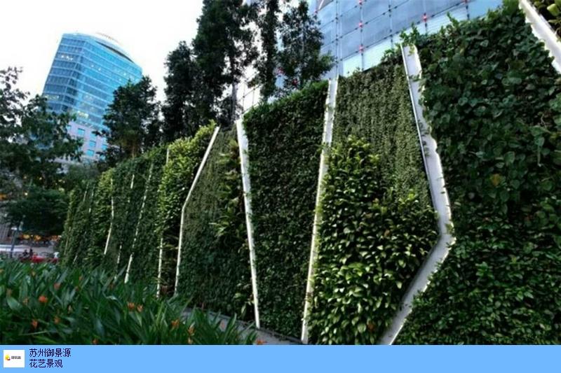 安徽植物墙美陈,植物墙