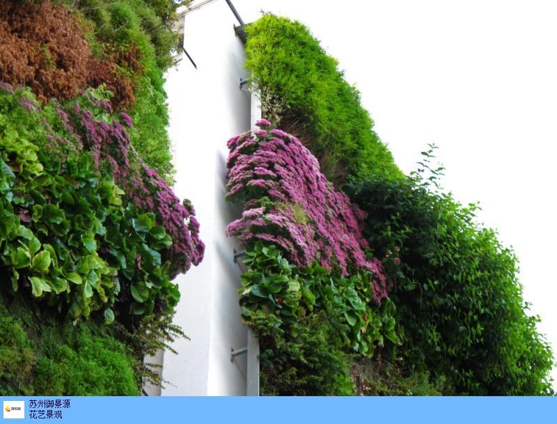 陕西植物墙设计原则 和谐共赢「相城经济技术开发区御景源装饰材料供应」