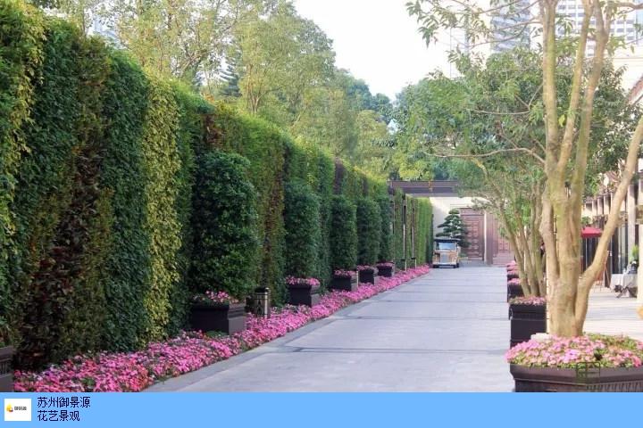 生态植物墙定制,植物墙