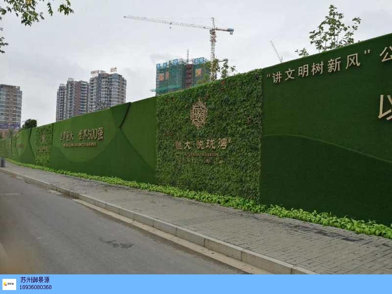 南通绿植墙高雅制作,绿植墙