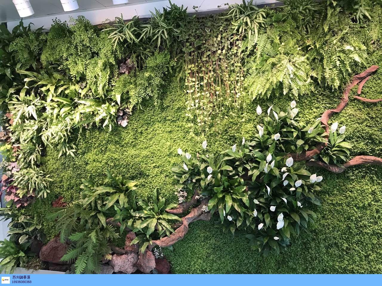 南京商场绿植墙