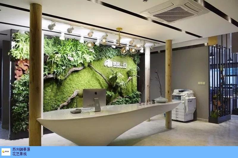 室内植物墙效果,植物墙