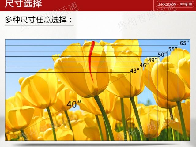 丽江LED屏厂家 创造辉煌 贵州智博远通科技供应