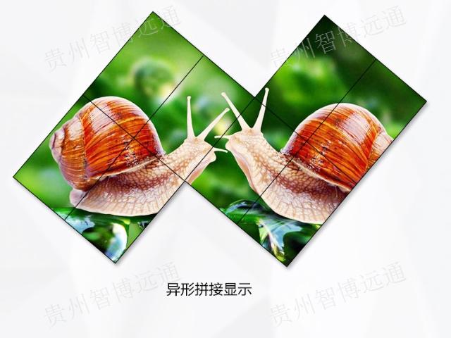 云南led电子显示屏生产厂家 抱诚守真 贵州智博远通科技供应