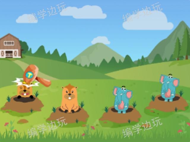 云南少年編程培訓課程哪家好 新浩澤編玩邊學編程培訓供應
