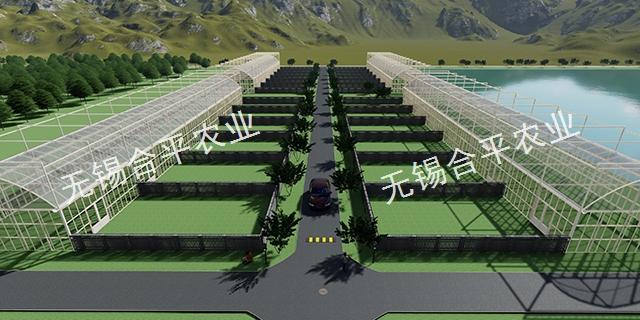 建個玻璃溫室多少錢「無錫合平農業科技供應」