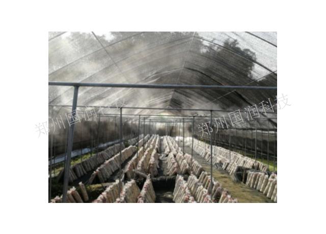 湖北烟叶加湿器 服务至上 郑州国润科技供应