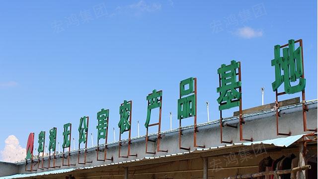 深圳食材配送系統 歡迎來電「宏鴻農產品供應」