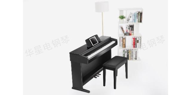 北京上海华星钢琴电子琴 真诚推荐 上海华新乐器供应