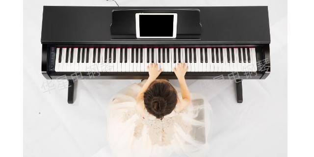 上海上海华星钢琴入门钢琴 诚信经营 上海华新乐器供应