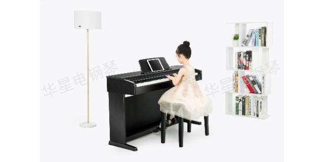 河南S8钢琴便携电钢琴 客户至上 上海华新乐器供应
