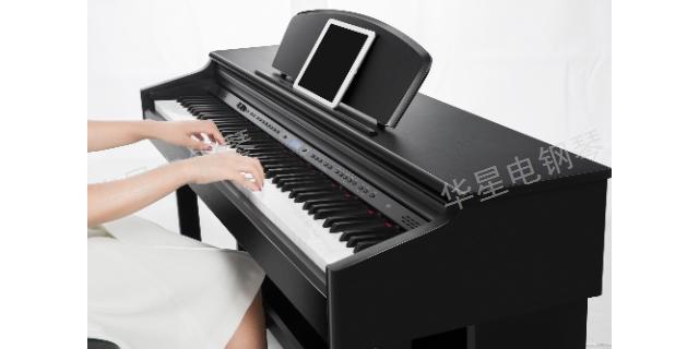 安徽哪种品牌钢琴便携电钢琴 欢迎咨询 上海华新乐器供应