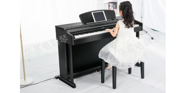 辽宁买什么钢琴 客户至上 上海华新乐器供应